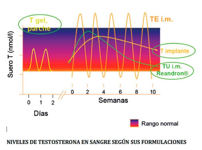 Testosterona y Andropausia. Déficit de testosterona en el hombre Hipogonadismo o andropausia